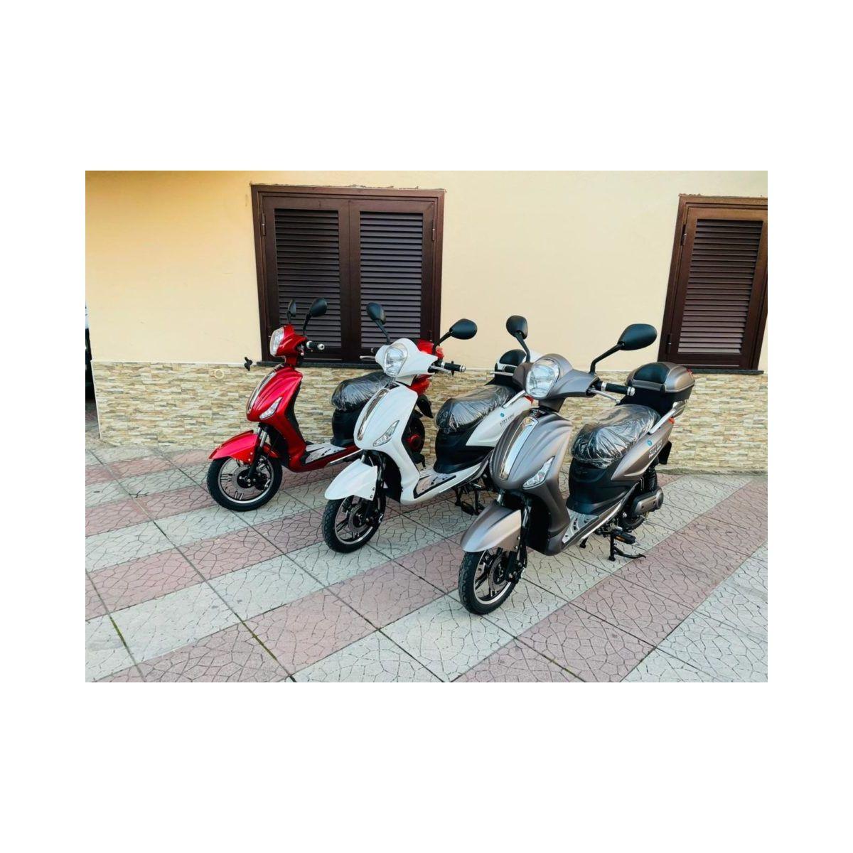 Scooter elettrico Bici elettrica a pedalata assistita 250w Piombo